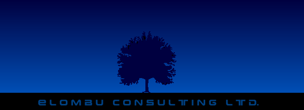 Elombu Consulting Limited